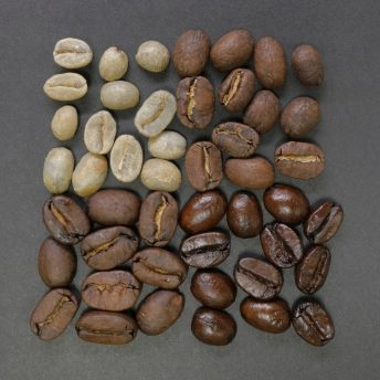 roasted coffee difference